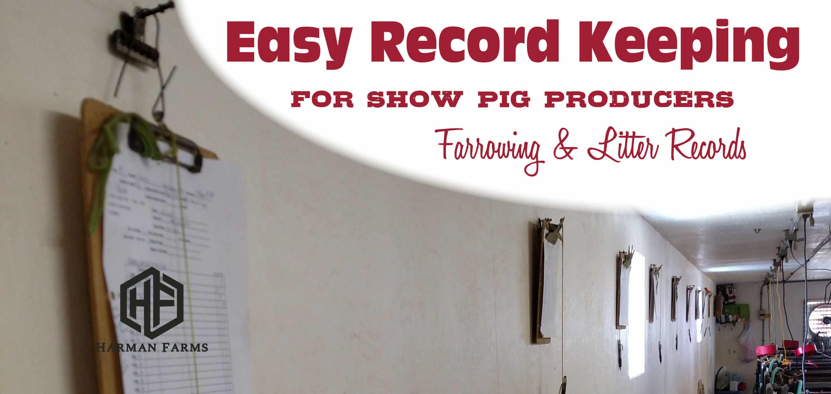 Easy Record Keeping for Showpig Producers