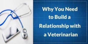 Veterinarian client relationship