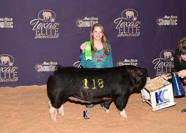 Placing Poland Gilt Elite Gilt Show